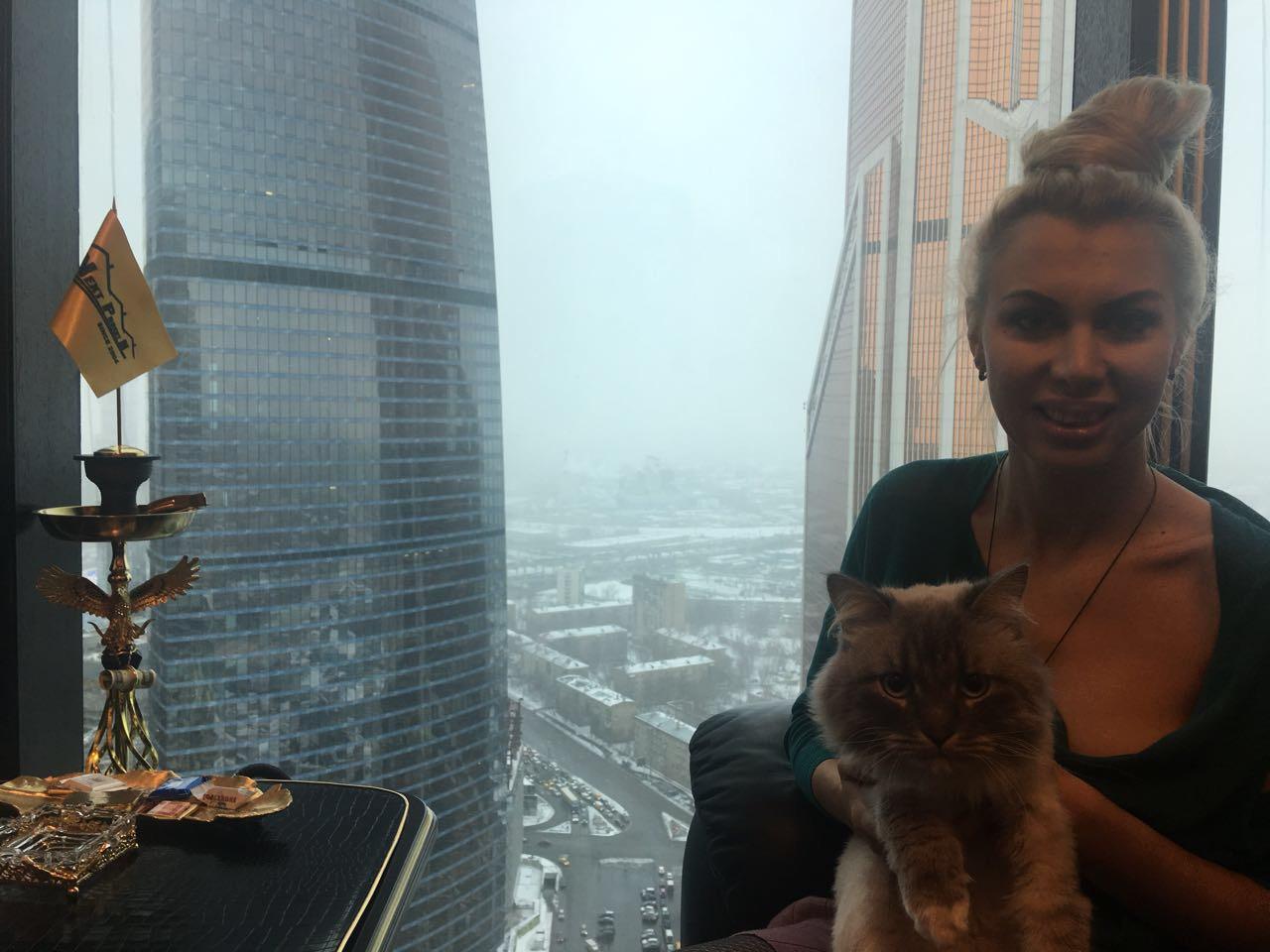 Кота приняли! Вакансия «Элитный кот дегустатор квартир» закрыта