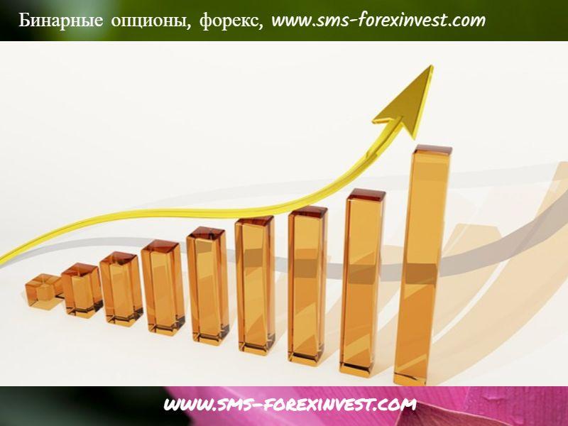 Портал SMS-ForexInvest.com рассказал о специфике обучения начинающих брокеров основополагающим принципам биржевой торговли